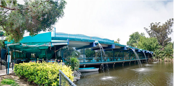 anthony 39 s fish grotto in la mesa is a family tradition for
