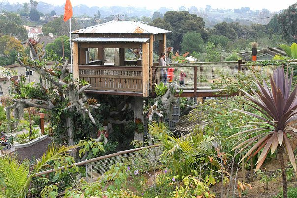 Encinitas 39 S San Diego Botanic Gardens Is World Renowned